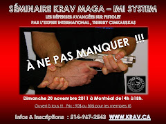 SMINAIRE / KRAV MAGA MONTRAL / DIMANCHE 20 NOVEMBRE 2011 (fini)