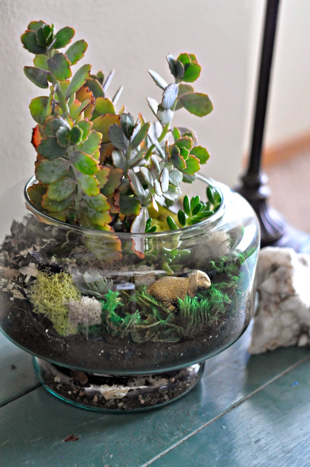 Easter Succulent Terrarium from Fry Sauce and Grits