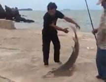 Gila Mancing Ikan Hiu Kemejan Di Pelabuhan Mantap