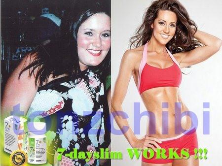 Penurun Berat Badan (Suplemen Penurun Berat badan) Slim Dietary Supplement : MSS-17