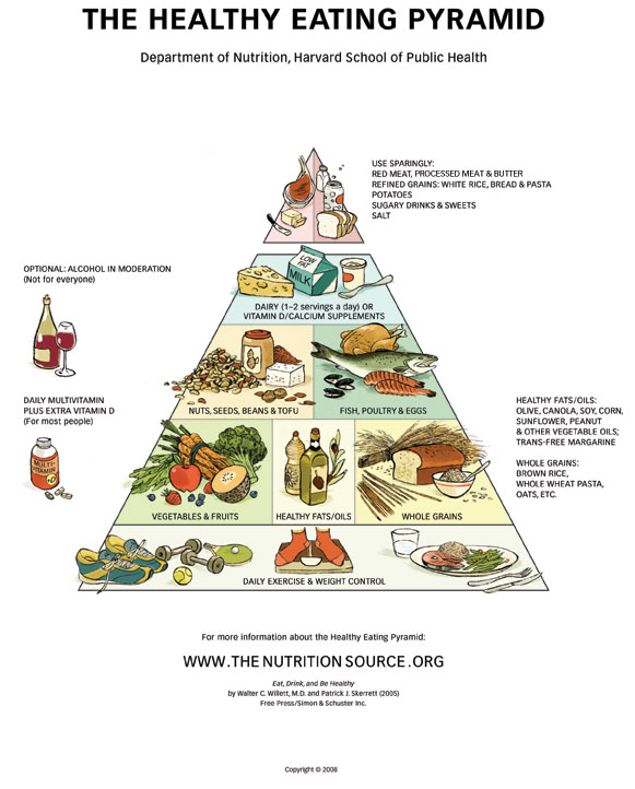 clearly was based on USDA's first pyramid graphic. Harvard's ...