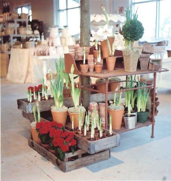 Whitehaven le jardin francais boutique de noel for Jardin francais
