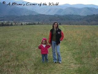 Spring Break, Cades Cove, Tennessee