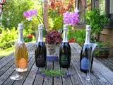 Sektpaket  Menger-Krug 4 Flaschen bestehend aus Riesling Brut, Pinot Brut, Rosé Brut, Chardonnay