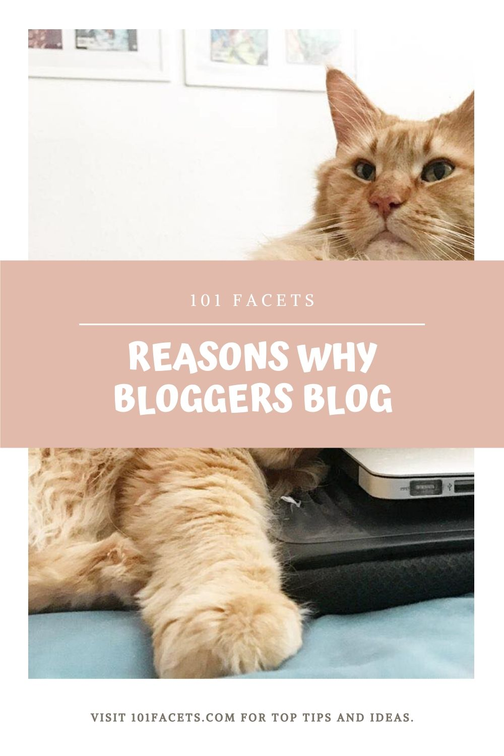 10 Reasons Why Bloggers Blog 2