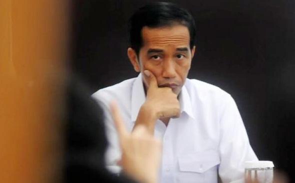 Langkah Kuda Pak Jokowi