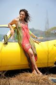 Seerath Kapoor latest glam pics-thumbnail-5