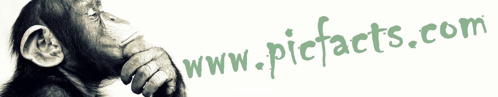 www.PicFacts.com
