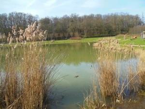 Pique-nique Blois - étang Chouzy sur cisse