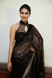 Vaani Kapoor spicy pics in transparent Black Saree at Aaha Kalyanam Movie