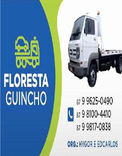 Floresta Guincho