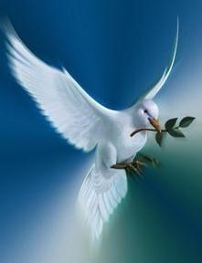La bendición de Jehová es la que enriquece, Y no añade tristeza con ella. Pr 10:22