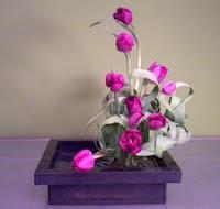 Zen Tulips Design