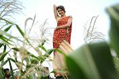 Tanvi vyas Latest Photos in Half Saree-thumbnail-18