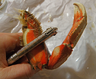 Using Nutcracker on Crab Claw
