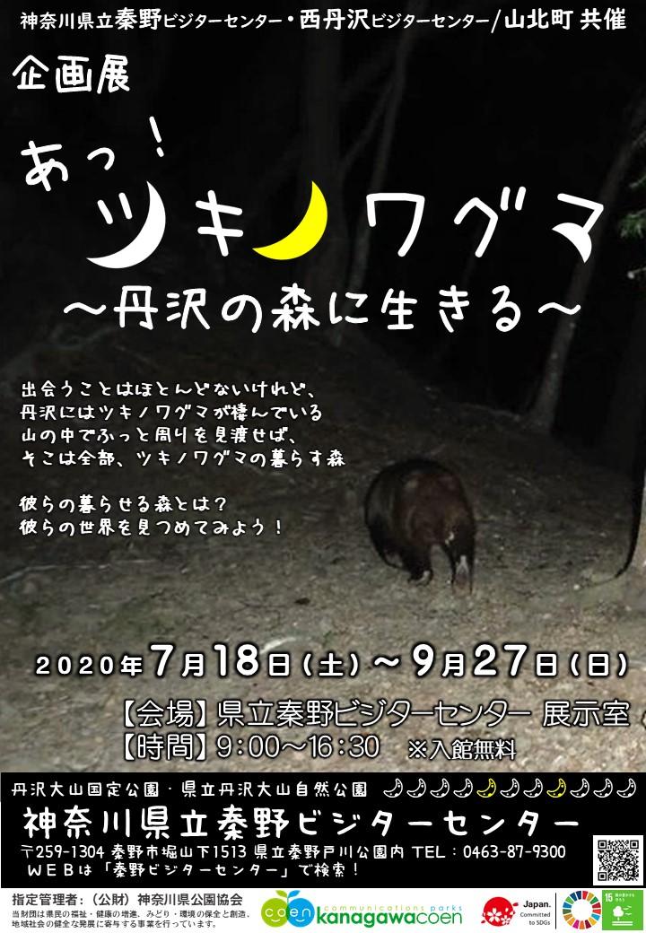 企画展「あっ!ツキノワグマ~丹沢の森に生きる~」開催中!