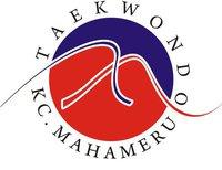 wtf world taekwondo fereration