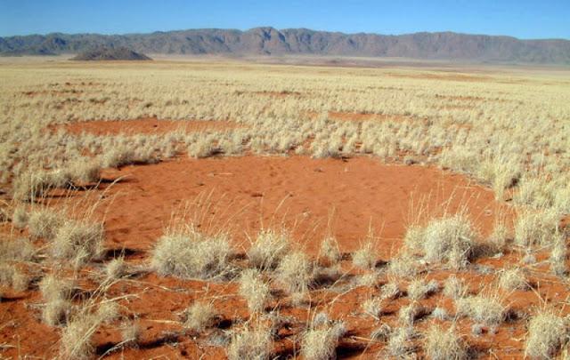 Círculos de las Hadas, Namibia, África