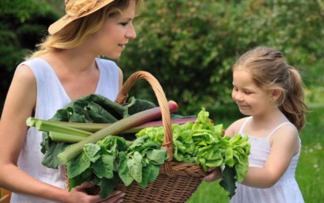 2 Makanan Rendah Kalori Yang Mudah Ditemukan