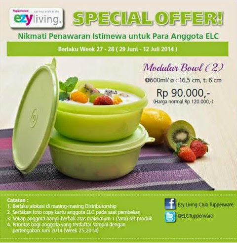 Tupperware Modular Bowl (2) Promo