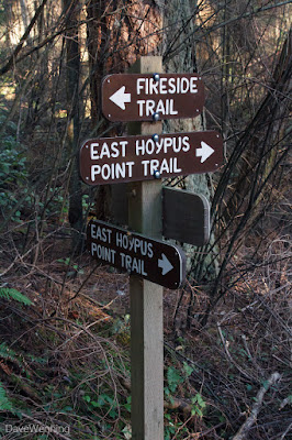 East Hoypus Trail Junction