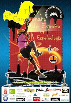 Cartel Oficial del 8º Campeonato de España
