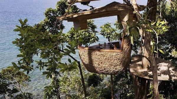 Restaurant on tree