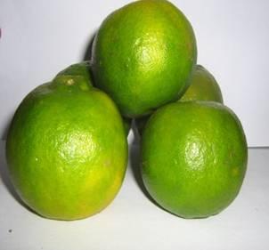 Jeruk Keprok dan manfaat jeruk keprok untuk kesehatan
