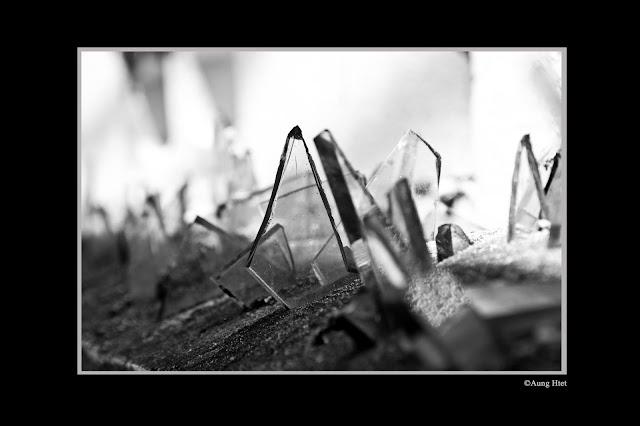 ဖုိးထက္ – စီဗယ္လိုက္ေဇးရွင္း မရိွရင္ က်ိန္ဆဲမယ္