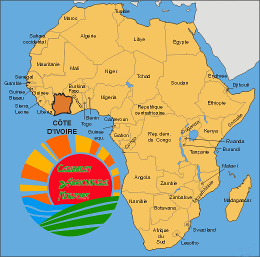 african contribution to the caribbean The caribbean, that region that encircles the sea, shores and the islands also  called antilles, is known for its thriving and diverse african diaspora in the.