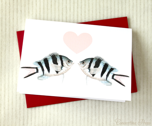 Cape Cod wedding blog photo from Concertina Press - Stationery and Invitations about Nautical Valentines with Otters and Whales and Fish, oh my!