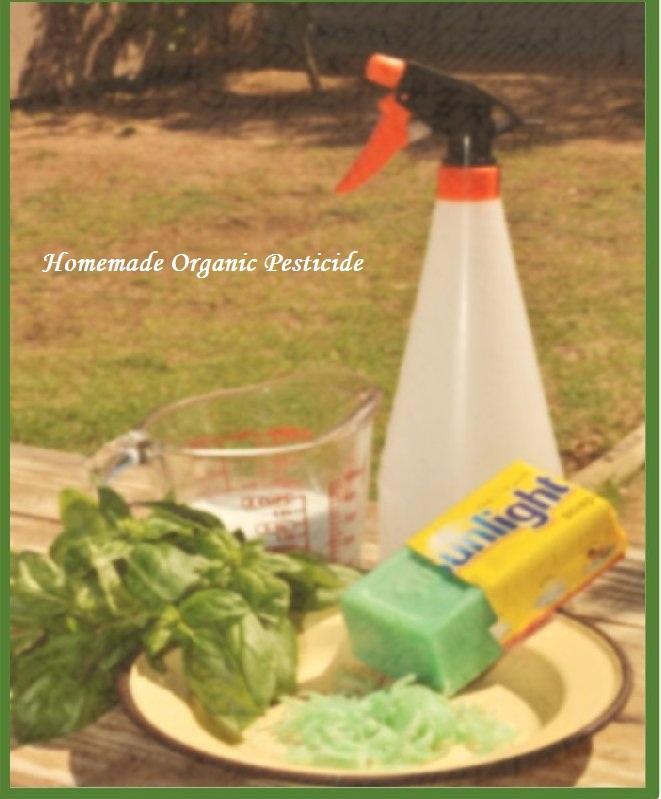 Organic pesticide and bio pesticide - Homemade organic pesticides ...