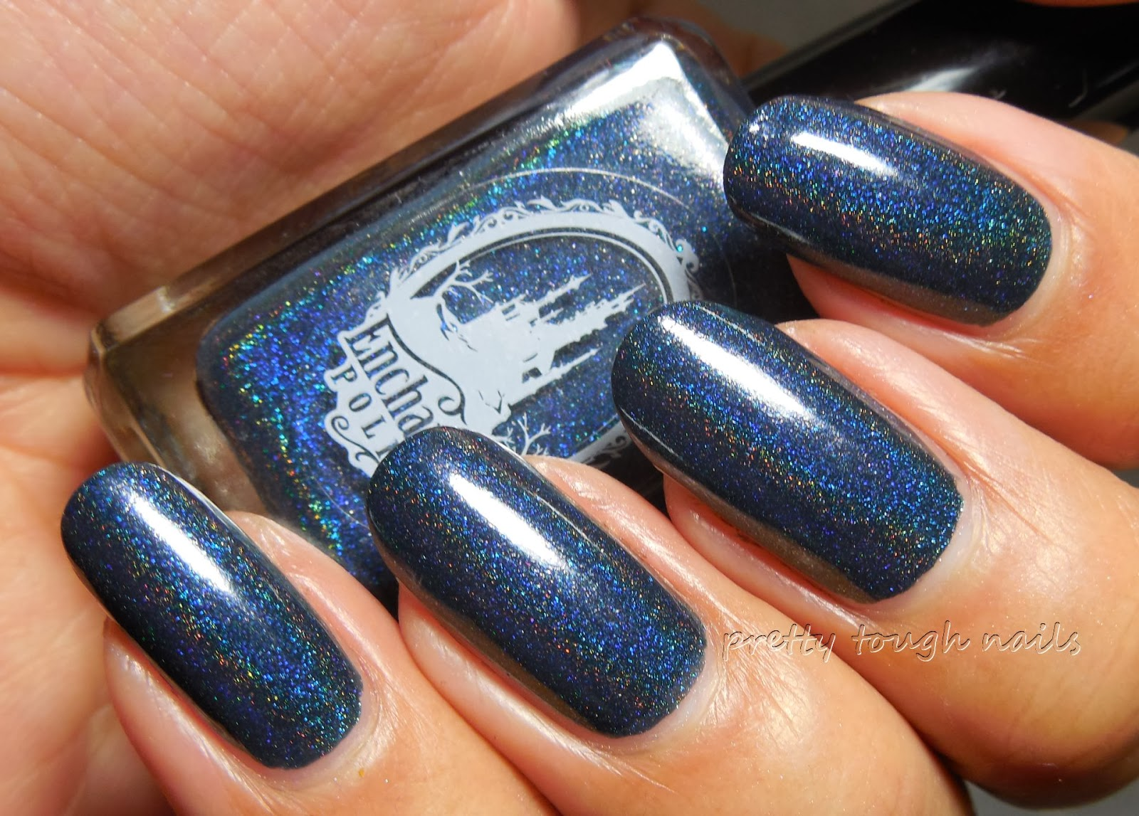 Enchanted Polish January 2014