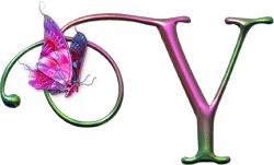 letra Y con mariposa