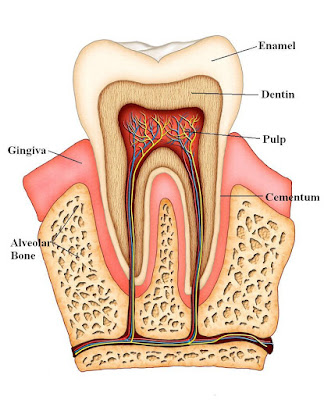 How to Cope with Tooth Sensitivity?