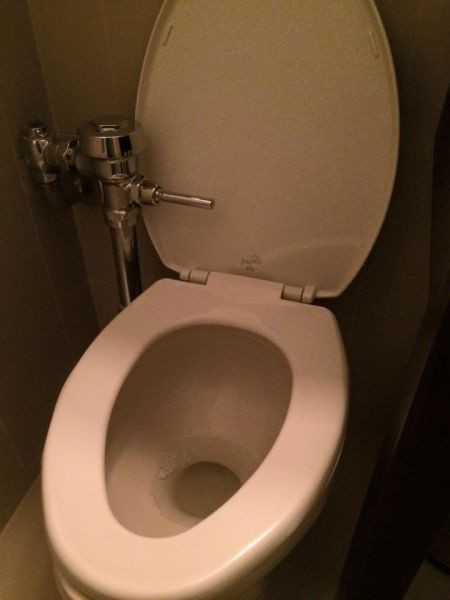 32 Design Fails That Make Little — To Zero — Sense - Flush before you even sit down