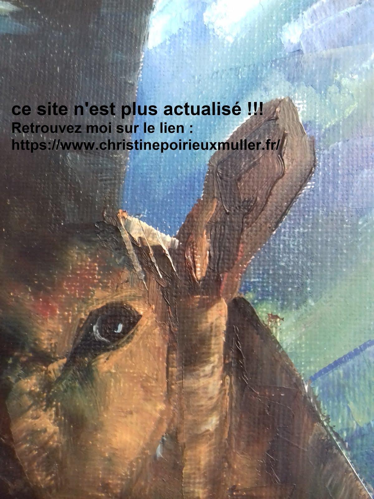 https://www.christinepoirieuxmuller.fr/