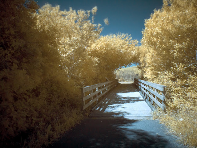 Infrared foot bridge