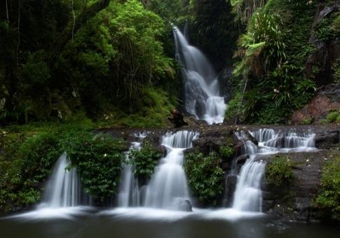 Associazione alex foreste pluviali pi belle del mondo for Planimetrie da 4000 piedi quadrati
