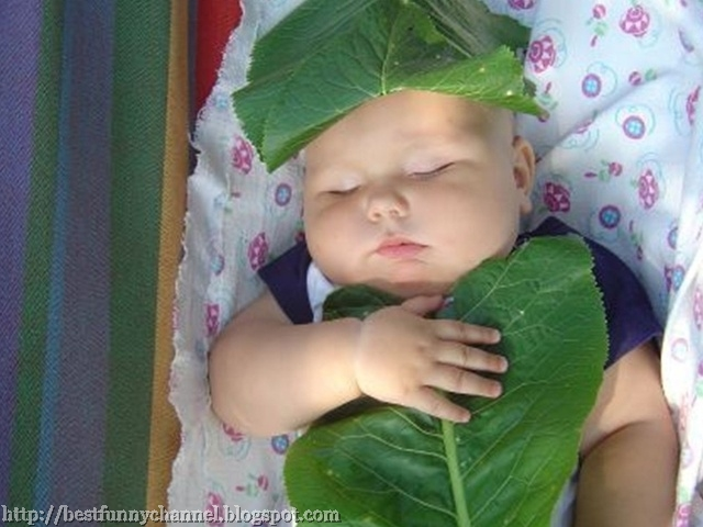 Very funny sleeping baby.