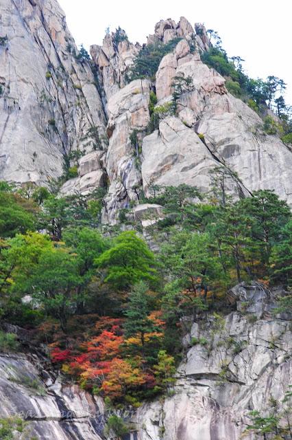 雪嶽山紅葉