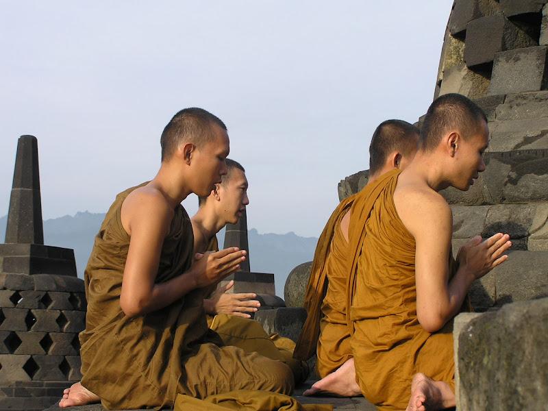 meditacion y cerebro