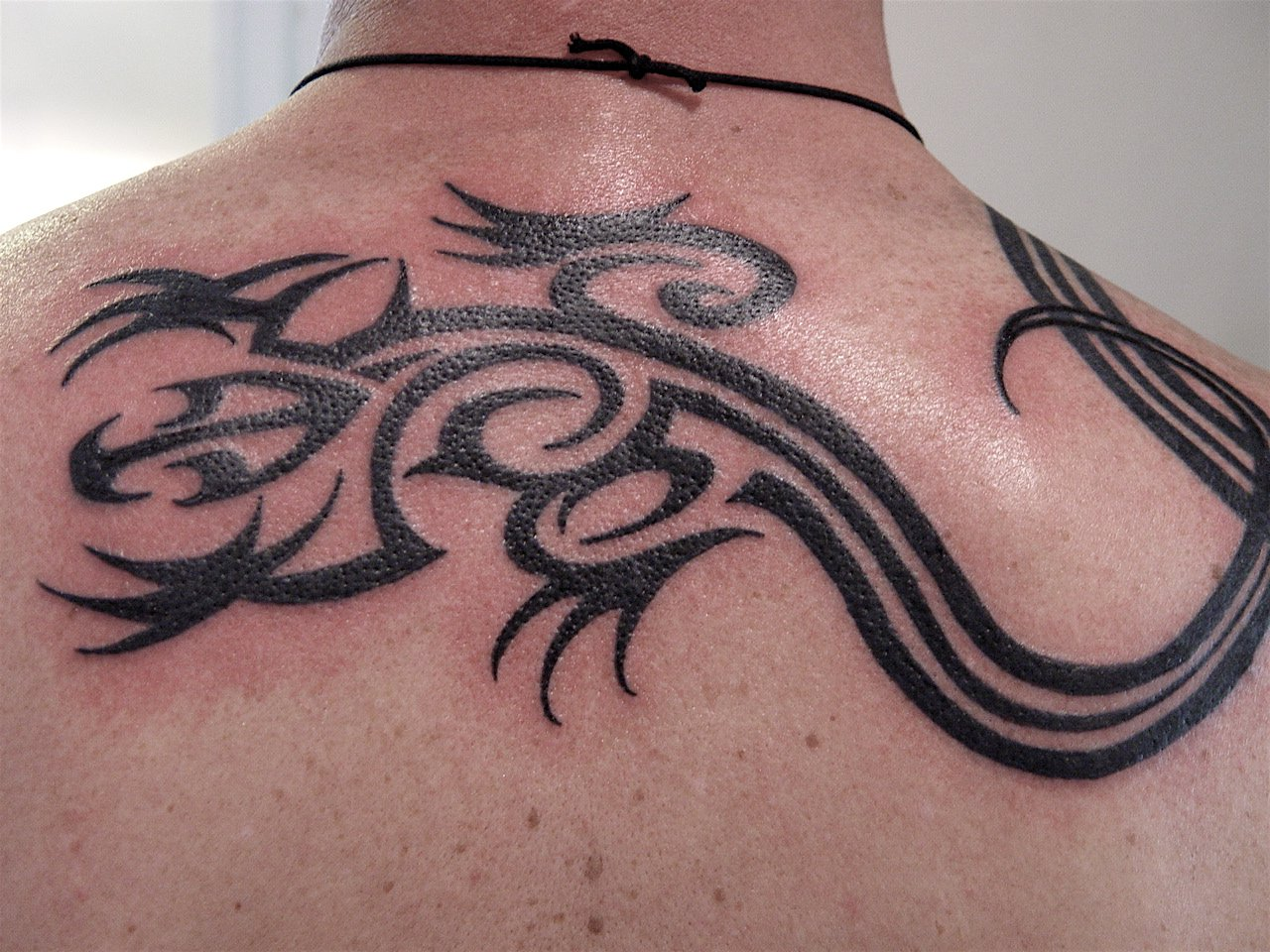 Lizard+tattoos+ Free Tattoooblogspotcom+ Tribal Lizard By Ron Hendon