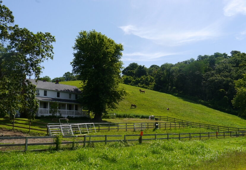 Grandma Moses farm