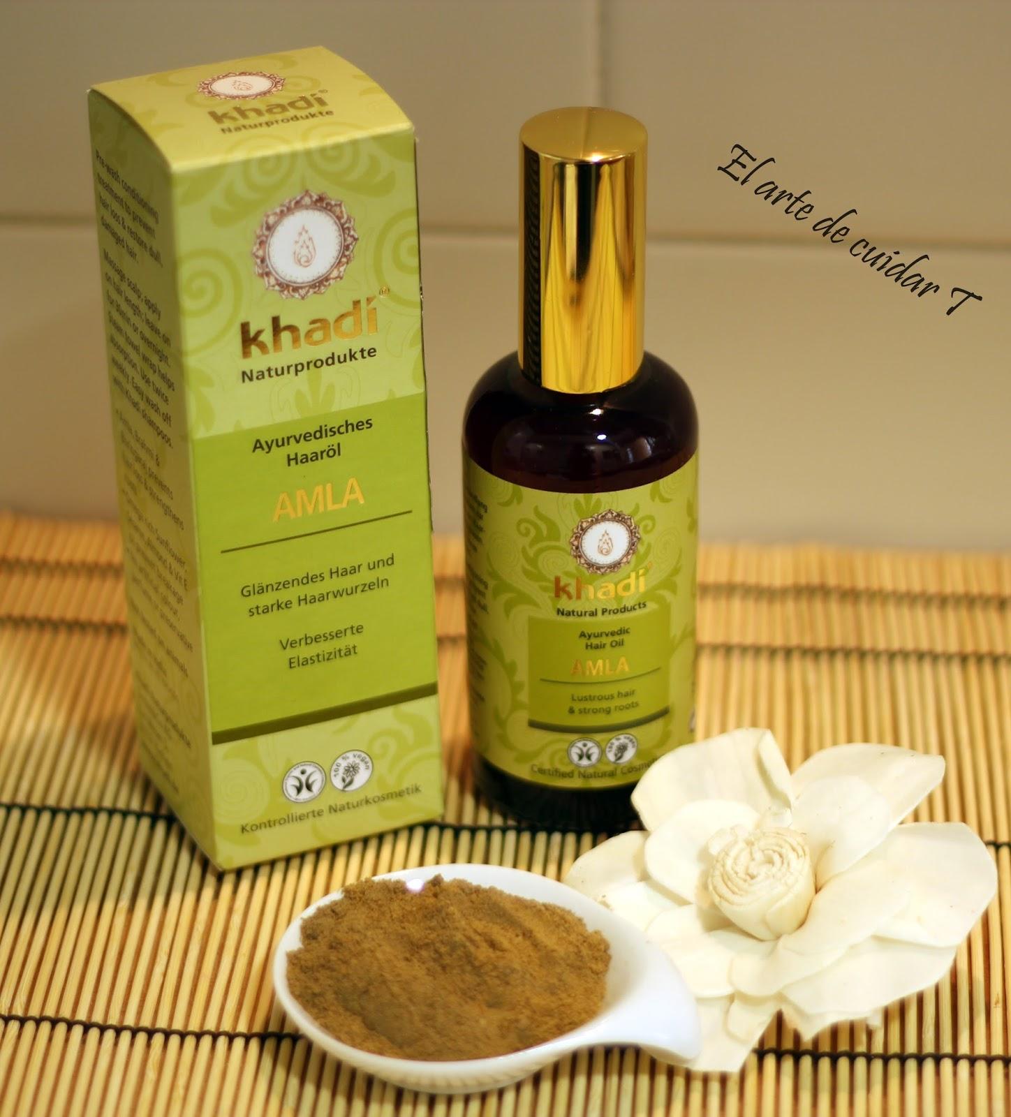 La mascarilla húmeda eficaz para los cabellos secos
