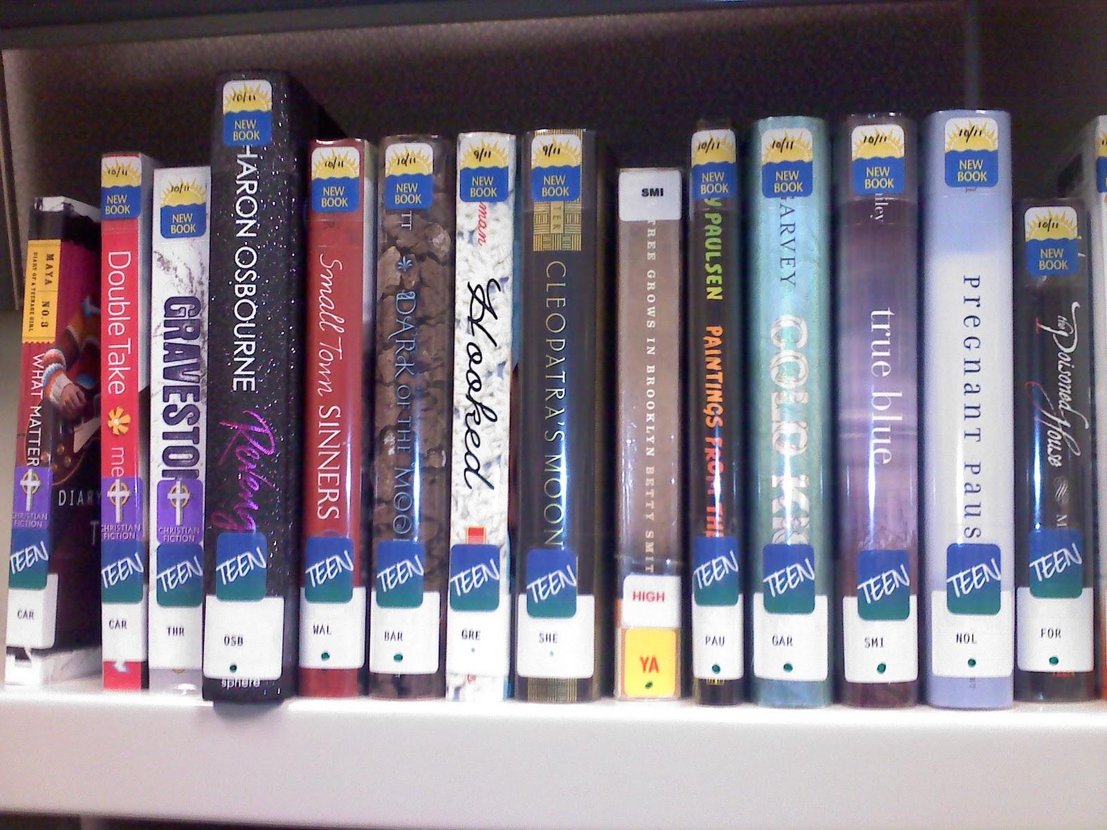 Recent fiction books