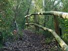 Baranes de fusta a la Ruta de les Colònies