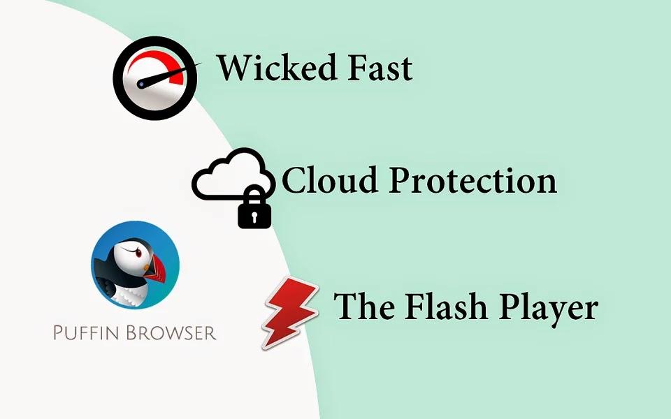 Puffin Web Browser Premium Apk