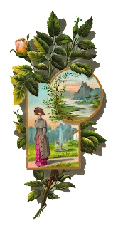 Rose Clip Art Frame