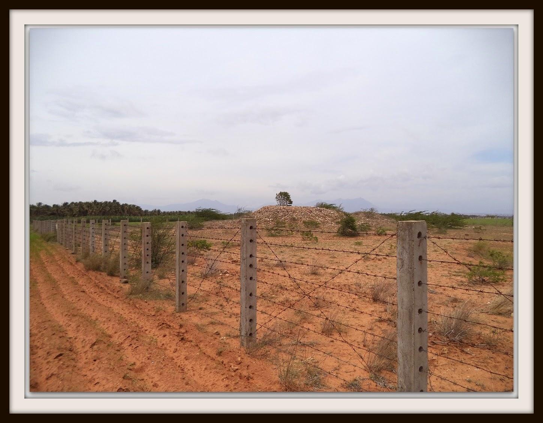 Archaeology, Chettipalayam, ASI, Archaeological Survey of India, Vellalore, Coimbatore, India